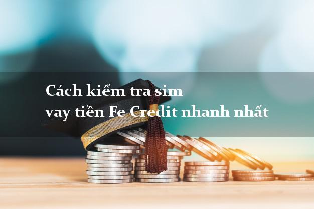 Cách kiểm tra sim vay tiền Fe Credit nhanh nhất